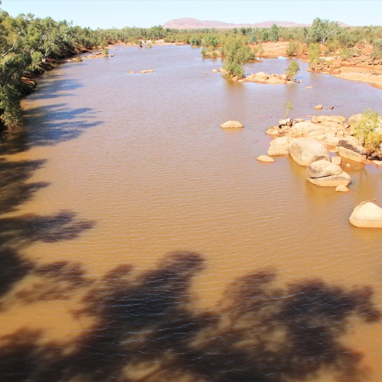 Ashburton river, at nanutarra roadhouse